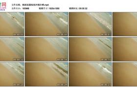 高清实拍视频素材丨倾斜拍摄海浪冲刷沙滩