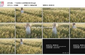 4K实拍视频素材丨一个金发的小女孩奔跑在麦田里