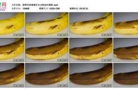 高清实拍视频素材丨新鲜的香蕉腐烂全过程延时摄影