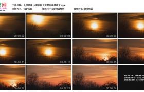 4K实拍视频素材丨乡村日落 太阳从树木前景后缓缓落下