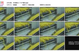高清实拍视频素材丨马铃薯加工厂生产薯条