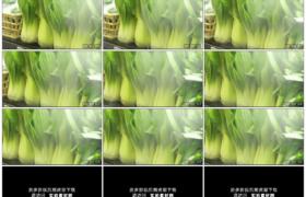 高清实拍视频素材丨摇摄超市货架上的新鲜蔬菜