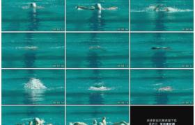 高清实拍视频素材丨女子在游泳池蝶泳慢镜头