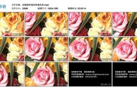 高清实拍视频丨拍摄旋转着的玫瑰花束