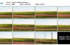 高清实拍视频丨飞驰的汽车上拍摄春天的田野