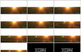 4K实拍视频素材丨航拍逆光下一大片向日葵田