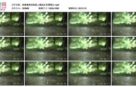 高清实拍视频素材丨雨滴滴落到地面上溅起水花慢镜头