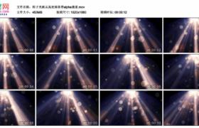 高清动态视频素材丨粒子光斑从高处掉落带alpha通道