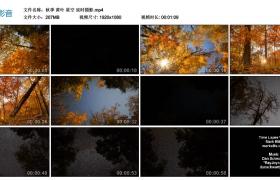 【高清实拍素材】秋季 黄叶 星空 延时摄影
