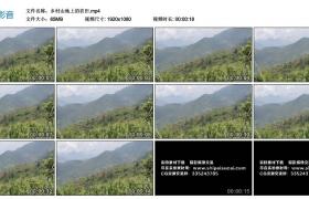 高清实拍视频丨乡村山地上的农田