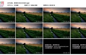 高清实拍视频丨黄昏时分的乡村麦田