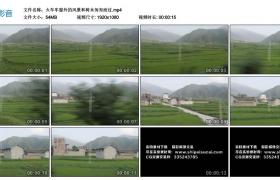 高清实拍视频丨火车车窗外的风景和树木匆匆而过