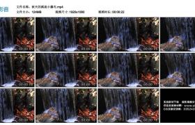 高清实拍视频丨秋天的溪流小瀑布