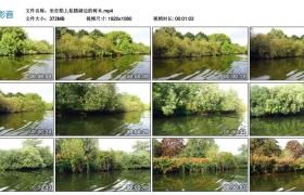 高清实拍视频丨坐在船上拍摄湖边的树木