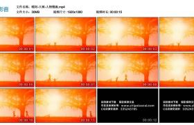 【高清实拍素材】暖阳-大树-人物慢跑