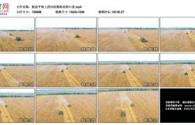高清实拍视频丨航拍平原上麦田里四台收割机收割小麦