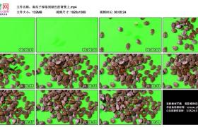 高清实拍视频丨南瓜籽掉落到绿色的背景上