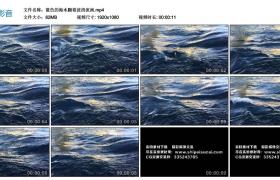 高清实拍视频丨蓝色的海水翻着波浪流淌