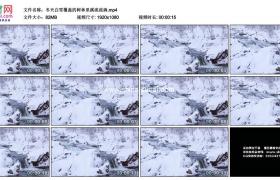高清实拍视频素材丨冬天白雪覆盖的树林里溪流流淌