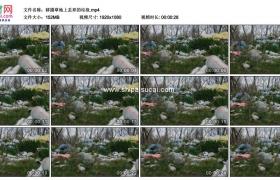 高清实拍视频素材丨移摄草地上丢弃的垃圾
