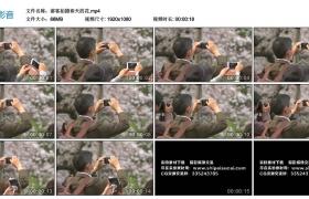 高清实拍视频丨游客拍摄春天的花