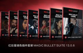 【AE/PR插件】红巨星调色插件套装 MAGIC BULLET SUITE 13.0.6
