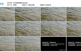 高清实拍视频丨风吹湖面荡漾起水波