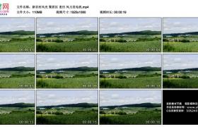 高清实拍视频丨新农村风光 聚居区 麦田 风力发电机