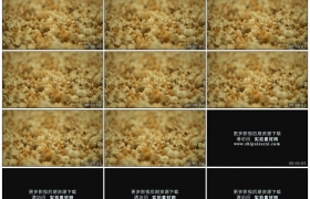 高清实拍视频素材丨颜色鲜艳的爆玉米花