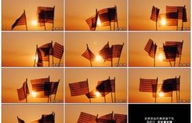 4K实拍视频素材丨昏黄的阳光照射着挥动的几面美国小国旗