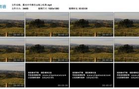 高清实拍视频丨晨光中羊群在山坡上吃草
