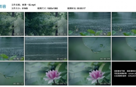 高清实拍视频素材丨雨景一组