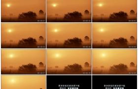 高清实拍视频素材丨清晨阳光升起草地上浓雾弥漫