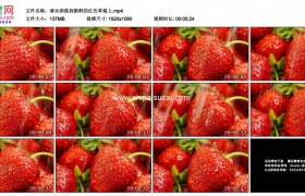 高清实拍视频素材丨清水洒落到新鲜的红色草莓上