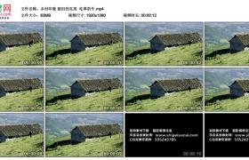 高清实拍视频丨乡村印象 破旧的瓦房  吃草的牛