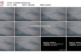 高清实拍视频素材丨白色的浓雾在山林间流动