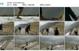 高清实拍视频丨农民在田间劳作
