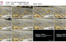 4K实拍视频素材丨汽车从马路上经过扬起黄色的落叶