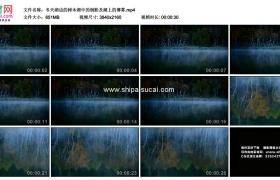 4K实拍视频素材丨冬天湖边的树木湖中的倒影及湖上的薄雾