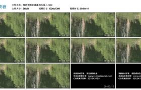 高清实拍视频丨绿树倒映在荡漾的水面上