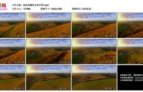 高清实拍视频丨航拍洒满阳光的田野