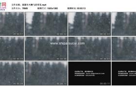 高清实拍视频素材丨摇摄冬天飘飞的雪花