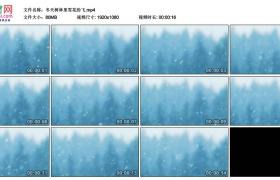 高清实拍视频丨冬天树林里雪花纷飞