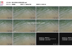 4K实拍视频素材丨微风吹拂着水面微波荡漾
