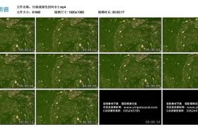 高清实拍视频素材丨污染成绿色的河水1