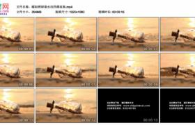 高清实拍视频素材丨暖阳照射着水边的漂流瓶