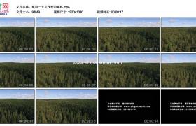 高清实拍视频素材丨航拍一大片茂密的森林