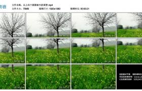 高清实拍视频丨从上向下摇摄春天的原野