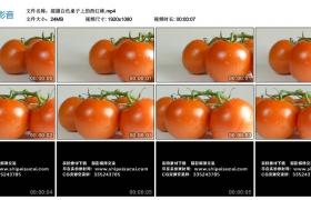 高清实拍视频丨摇摄白色桌子上的西红柿