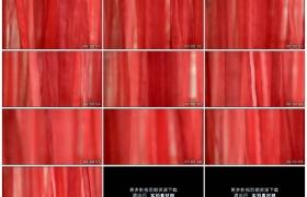 4K实拍视频素材丨红色绸缎随风飘动